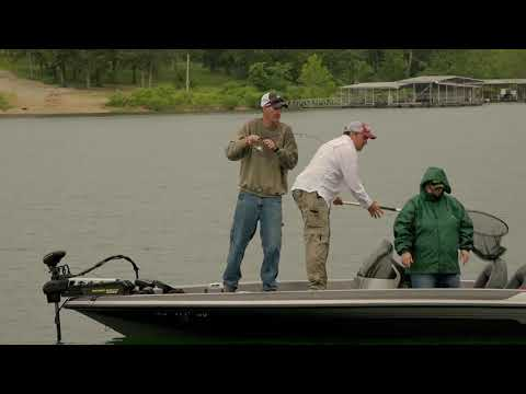 Bass Fishing On Table Rock Lake