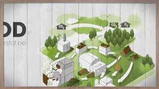 Hout geeft zuurstof : Levenscyclus van hout