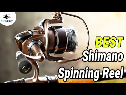 Best Shimano Spinning Reel In 2020 – Topmost & Exclusive Products Only For You!