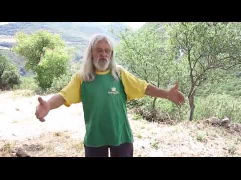 Pietro, come vivere da soli nella natura e in pace con il mondo. HD: https://youtu.be/3-yD8irQ8vM