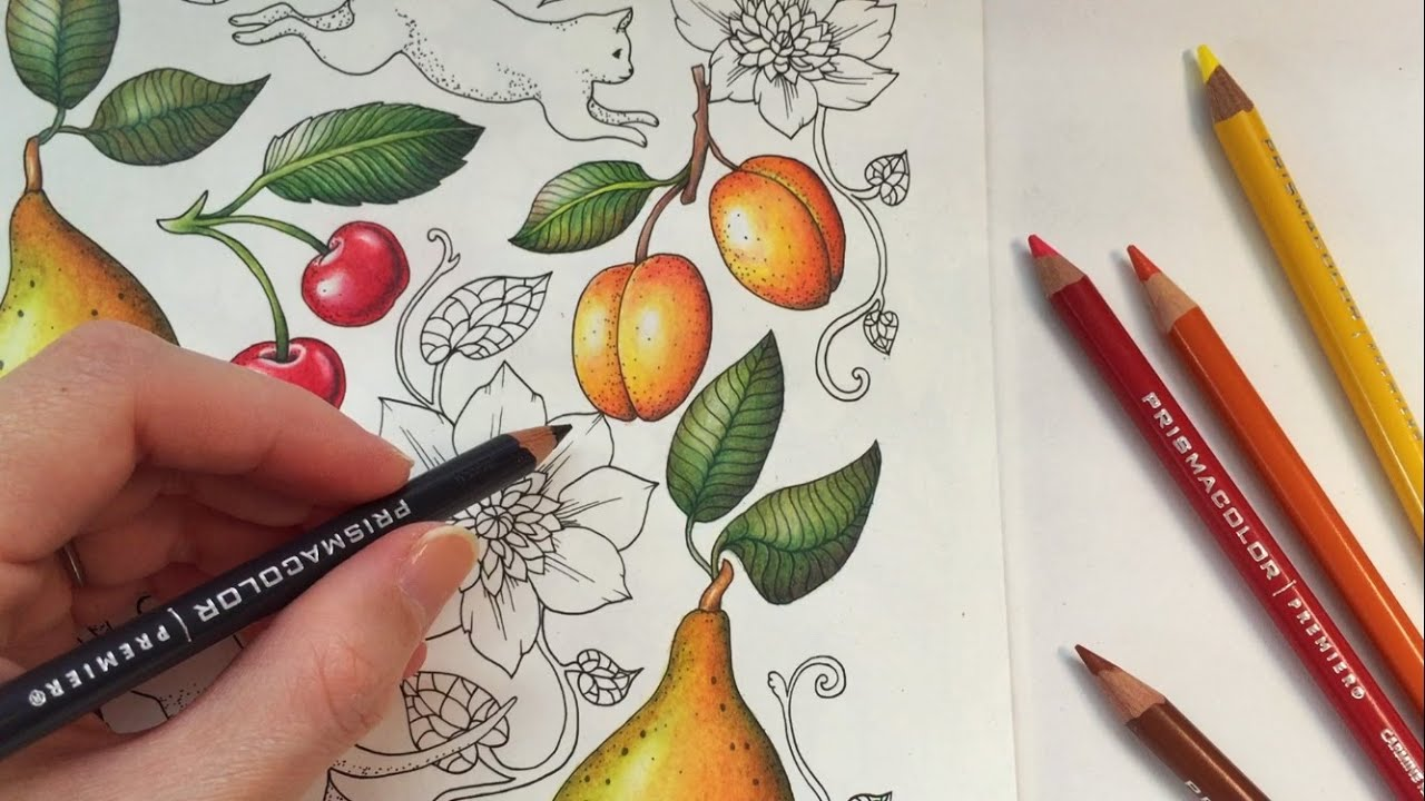 how i color an apricot blomstermandala coloring book coloring with colored pencils youtube