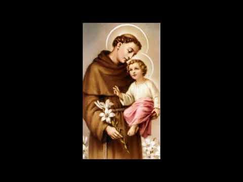 Oração com as forças de Santo Antônio