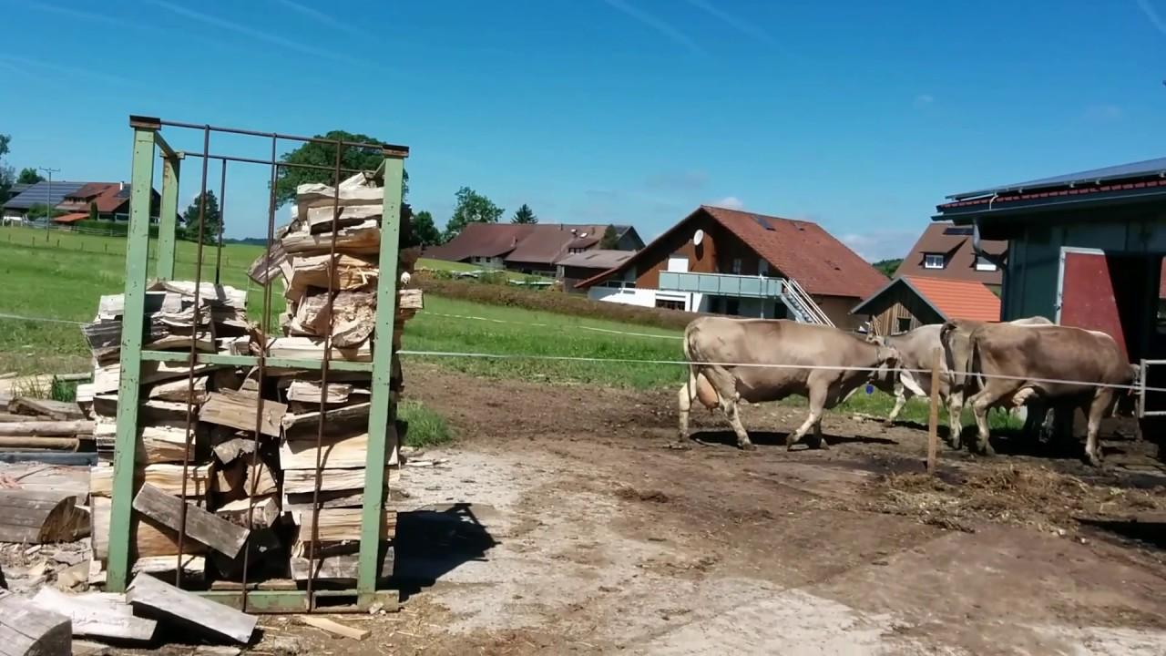 Купить ферму в германии дубай стоимость проезда в метро