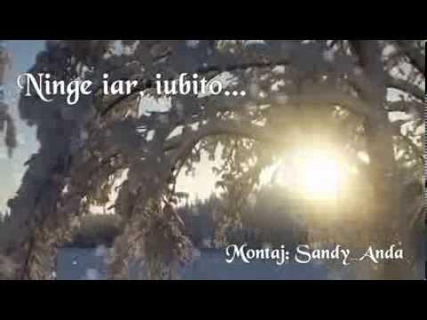 Marius Teicu - Iarna, alba iarna