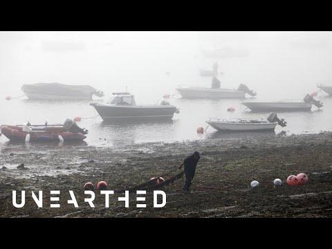 Who Controls UK Fishing Quota?