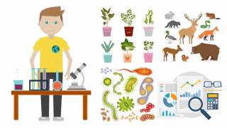 What is an Ecologist? Becoming an Ecologist. Education. Salary. thumbnail