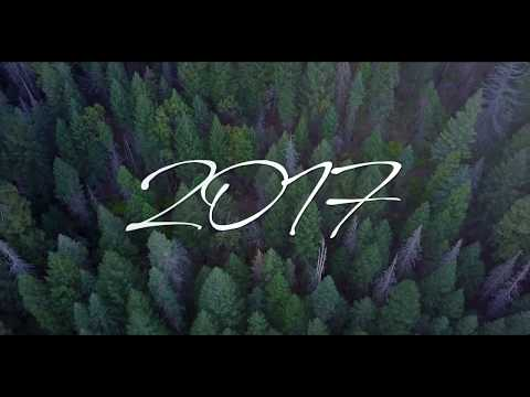 2017 My Year