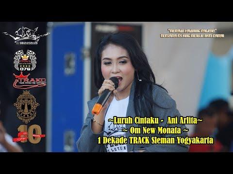 Luruh Cintaku -  Ani Arlita Om New Monata 1 Dekade TRACK Sleman Yogyakarta