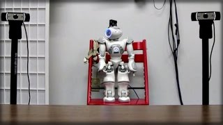 SCIENTISTS USE ROBOT TO ADVANCE AUTISM RESEARCH IN YOUNG CHILDREN