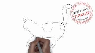 Как нарисовать пятнистую кошку поэтапно простым карандашом(83 486 рублей за 22 дня! Новая уникальная система заработка! http://glopages.ru/affiliate/1905293 НАЖИМАЙ прямо сейчас и УЗНАЕШЬ..., 2014-06-27T06:39:50.000Z)