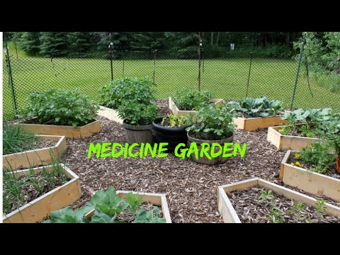 Best Herbal Medicine Guide and Recipe Book | The Lost Book of Remedies