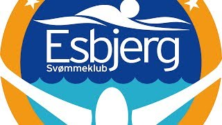 20th Danish International Swim Cup (4th session)