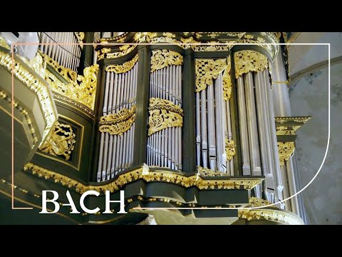 Bach - Fantasia and fugue in G minor BWV 542 - Van Doeselaar | Netherlands Bach Society