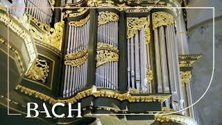 Bach - Fantasia and fugue in G minor BWV 542 - Doeselaar | Netherlands Bach Society