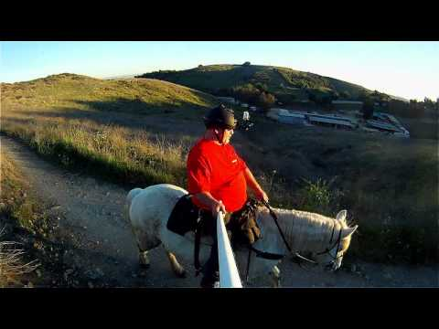Ride Above Talking Horse.mpg