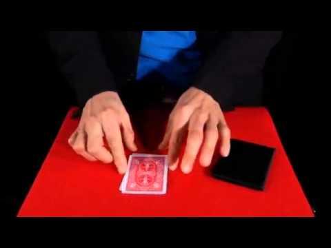 Transpo CardsBicycle