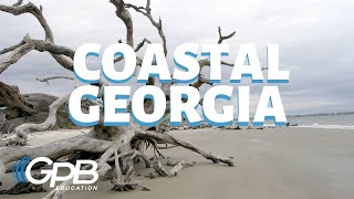 Barrier Islands | Georgia's Physical Features