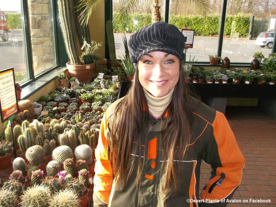 Garden Centre: New Plant Purchases + My Visit To The Wonderful Johnstown