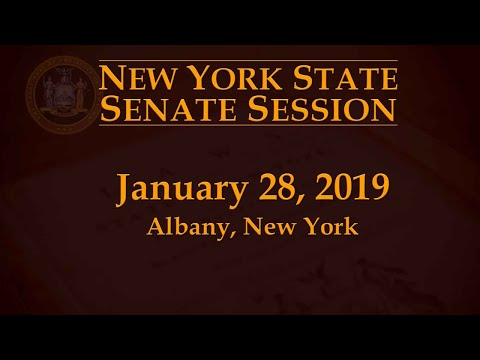 New York State Senate Session - 01/28/19 Mp3