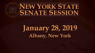 New York State Senate Session - 01/28/19