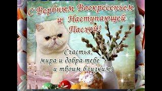 Красивое поздравление с ВЕРБНЫМ ВОСКРЕСЕНИЕМ!!! Видео открытка!
