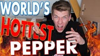 Tasting WORLDS HOTTEST PEPPER Challenge | Collins Key Taste Testing