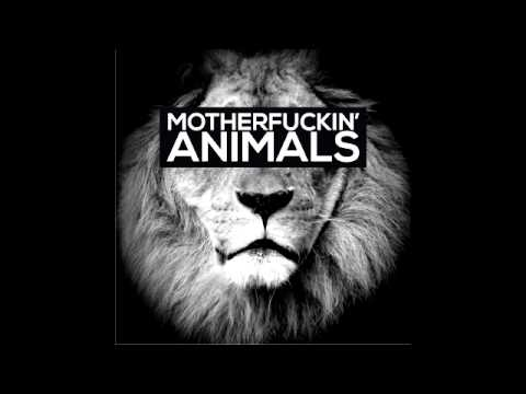 MARTIN GARRIX - ANIMALS [1 HORA]