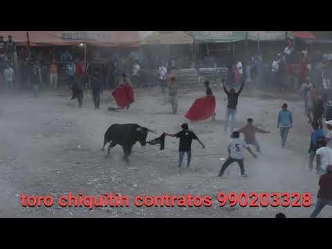 TORO CHIQUITIN EN CORRIDA DE TOROS .EUN SANTA ANA AYACUCHO  2019 DE LA GANADERIA SINCHI
