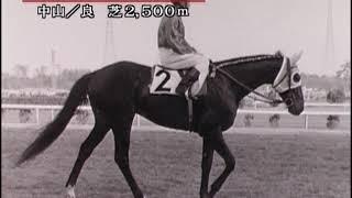 20世紀の名馬 92位 カブトシロー
