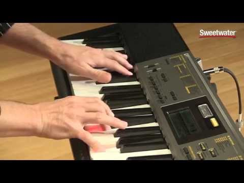 Sweetwater's Casio LK-260 Lighted-key Portable Arranger Keyboard Demo