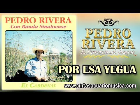 Por Esa Yegua - Pedro Rivera disco oficial El Cardenal con Banda Sinaloense