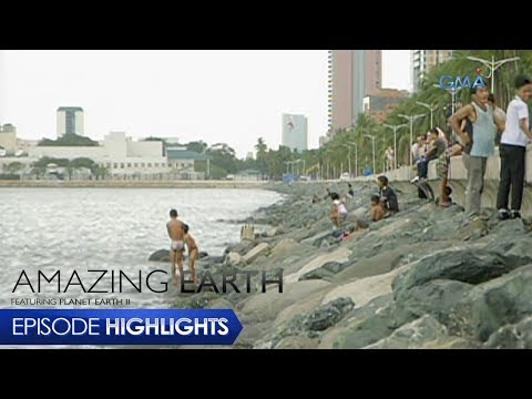 Amazing Earth: Rehabilitation of Manila Bay - 동영상