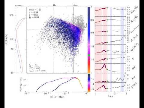 Dark Matter Halo Evolution: Mass Loss (Tidal Stripping)