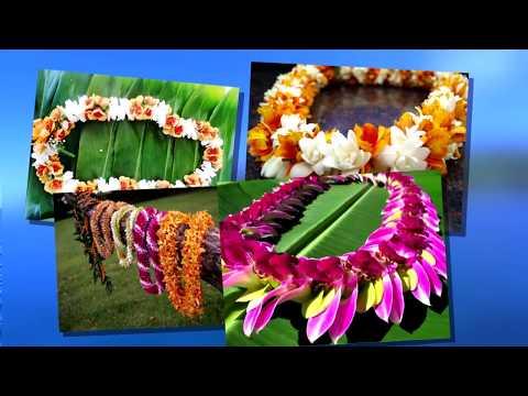 Hidden Gems of Oahu