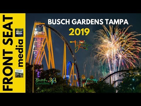 Buster - 4th Of July Spots And Events Going On In Tampa Bay