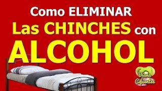 Alcohol Para Las Chinches De Cama - Como Eliminar Las Chinches Por Completo Rociando Este Remedio