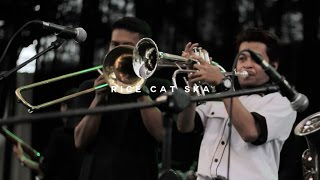 Rice Cat Ska : Sepanjang Jalan Kenangan (Cover) - Jazz Band Wanted 2017
