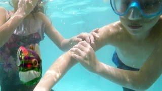 حطينا سمكة في المسبح!