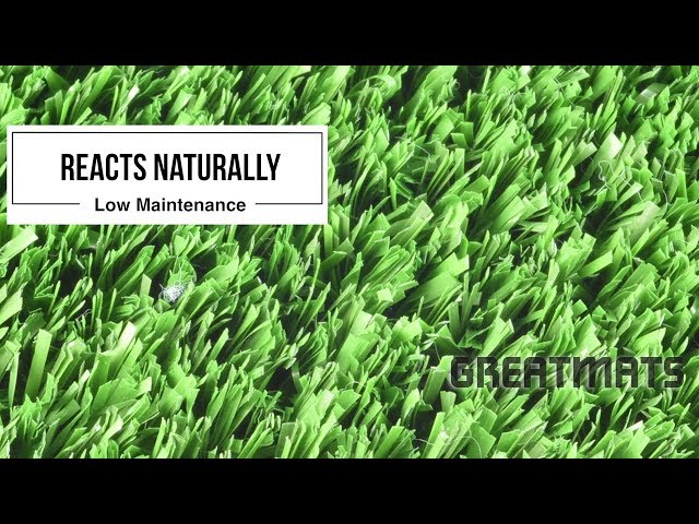 Athletic Field Artificial Grass Turf - Play Ball II