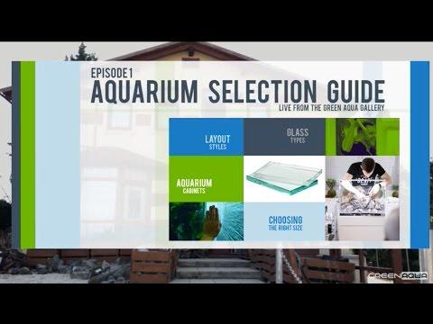 Episode 1: Aquarium Selection Guide