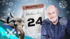 Warum ist Weihnachten am 24. Dezember? | Harald Lesch