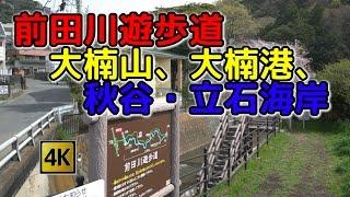 前田川遊歩道、大楠山、大楠港、秋谷・立石海岸