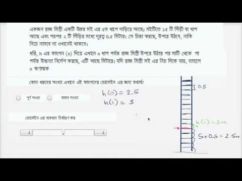 Determine the domain of a modeling function (defined over negative & positive integers) Bangla