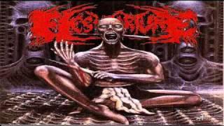 FleshTorture - Gore Rotten Flesh