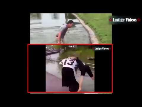 Lustige Videos Compilation #29