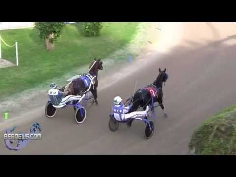 Harness Pony Racing New Years Day, Jan 1 2013