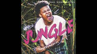 This is an instrumental remake of the song 'jungle' by nasty c was reproduced @wizdomination_(on twitter) email me: wizdomination@gmail....