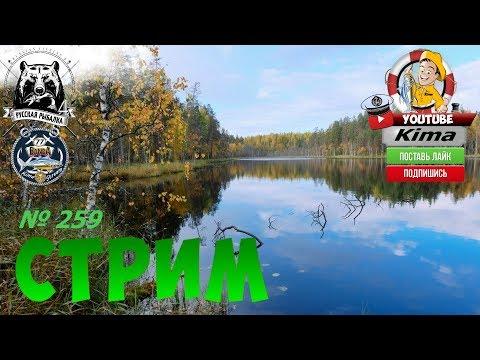 Русская рыбалка 4  - № 259