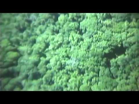 GSAP: Vietnam Air Strikes Report, 09/09/1970 (full)