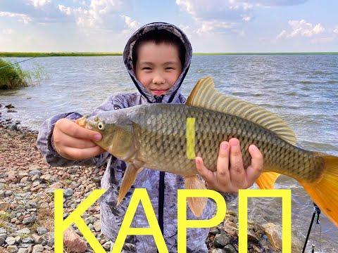 Carp Fishing, Карповая рыбалка на секретном озере, рыбалка в Казахстане.